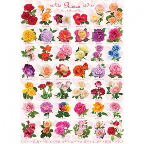 Eurographics Puzzle 1000 piese Roses