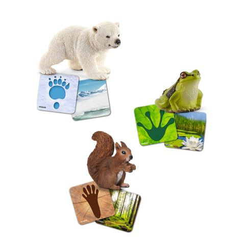 Schleich CARTONASE EDUCATIVE WILD LIFE